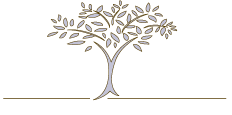 Livewell Chiropractic and Wellness